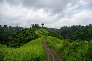 cam ridge walk.jpg