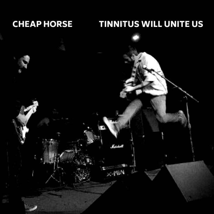 Cheap Horse Photo