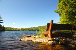 Bench on Island Pond, Washington NH