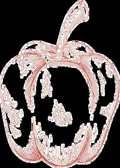 Paprika - decoratief element