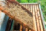shutterstock_561014890.jpg
