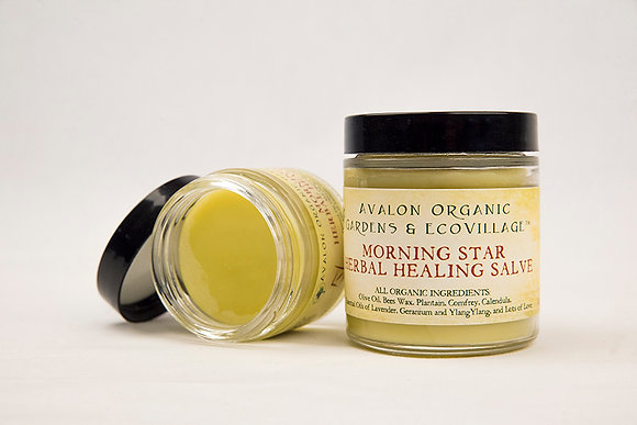 Morning Star Herbal Healing Salve