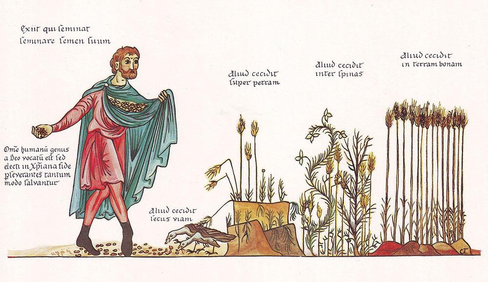 La parabole du semeur, trouvée dans la bible et reprise par Jim Rohn