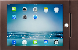 IPAD MINI bronze_edited.png
