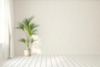 Pflanze.jpg