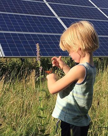 jasper w butterfly solar panel (002).jpg
