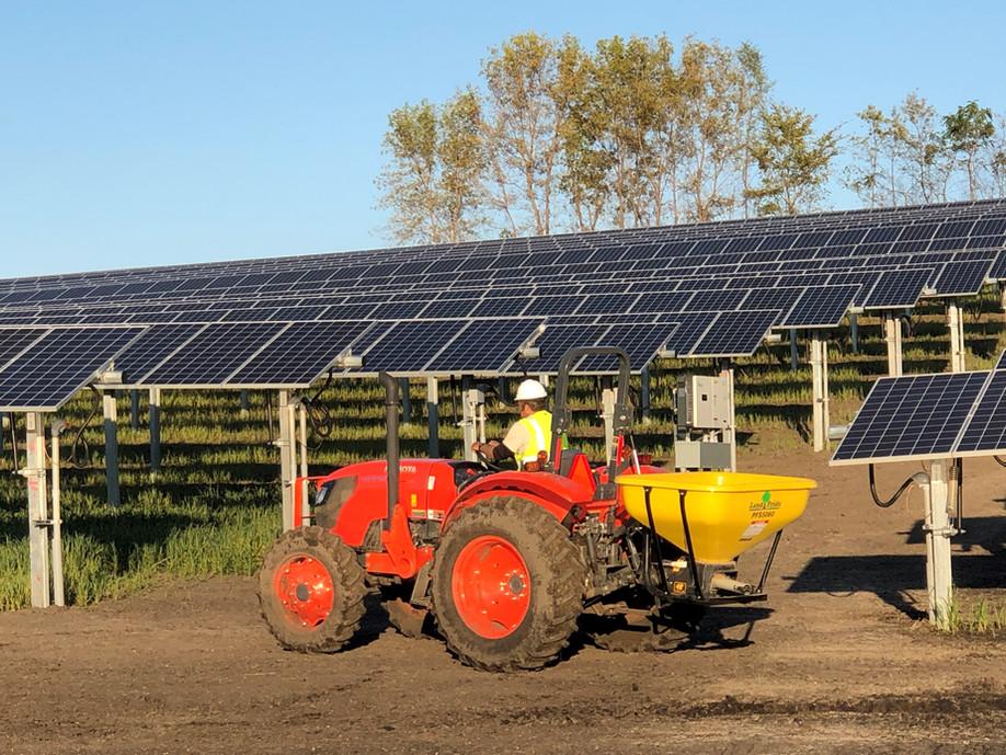solar seeding 1.jpg