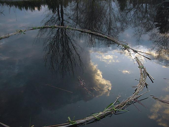 Env-Water3.jpg