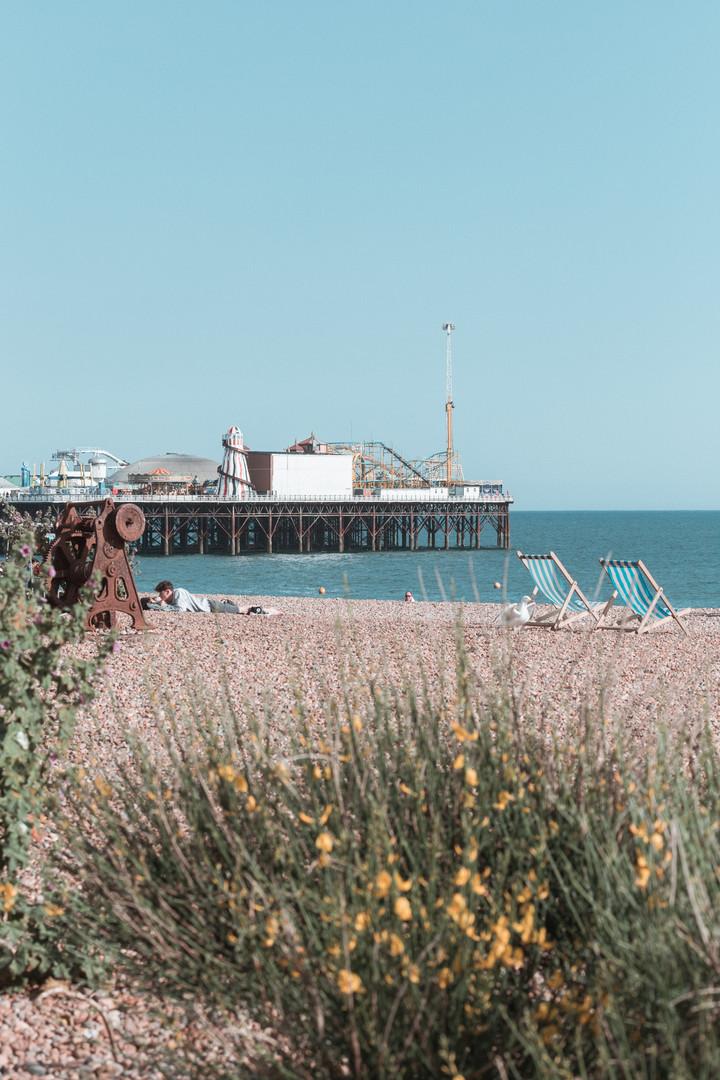 Brighton_SophieHaslam (21 of 25).jpg