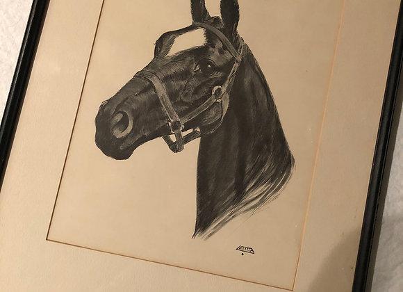 Vintage Equestrian Print by Letitia de Rham