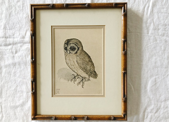 Vintage Owl Print in Bamboo-style Frame