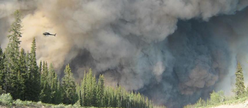 Feux de forêt : un été à risque