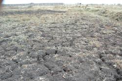 Zeer droge grond
