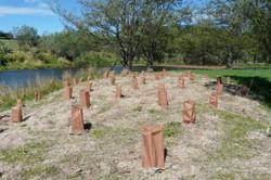 Waddington Wetland Planting