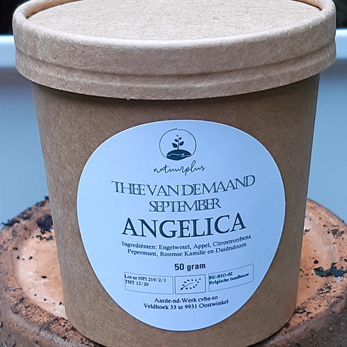 Thee INFUSIE ANGELICA  (los, 50g)