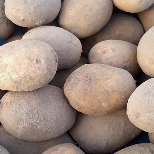 Aardappel kruimig 'carolus' (1kg)