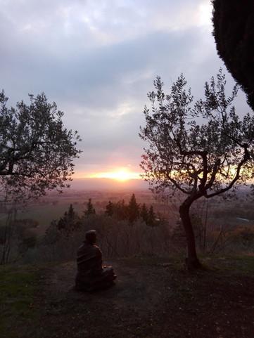 Hoe ik in de ban raakte van Franciscus van Assisi