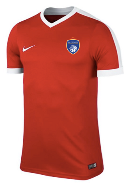 Youth Nike Red Training Dry Top