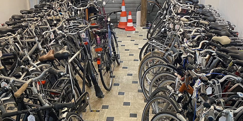 Arrivage chaque semaine de vélos hollandais