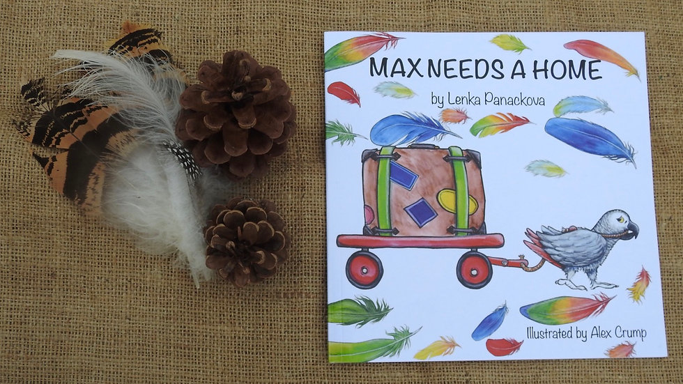 Max Needs A Home Storybook
