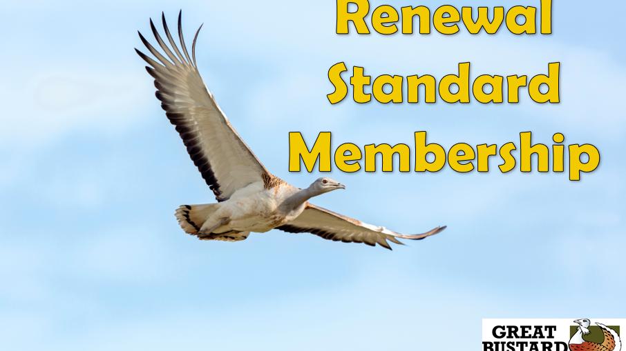 Annual Renewal Standard Membership