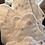 Thumbnail: Beldam Fertility Awareness Online