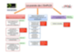 PDIET Plaine Commune contenu du module.j