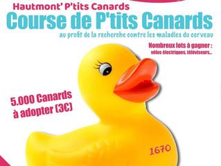 OPERATION PETIT CANARDS Rotary Club