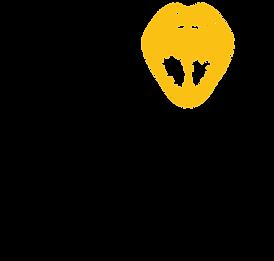 papila_wok_logo (1).png