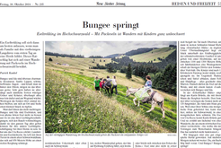 """Reise """"Bungee springt"""", NZZ 2014"""