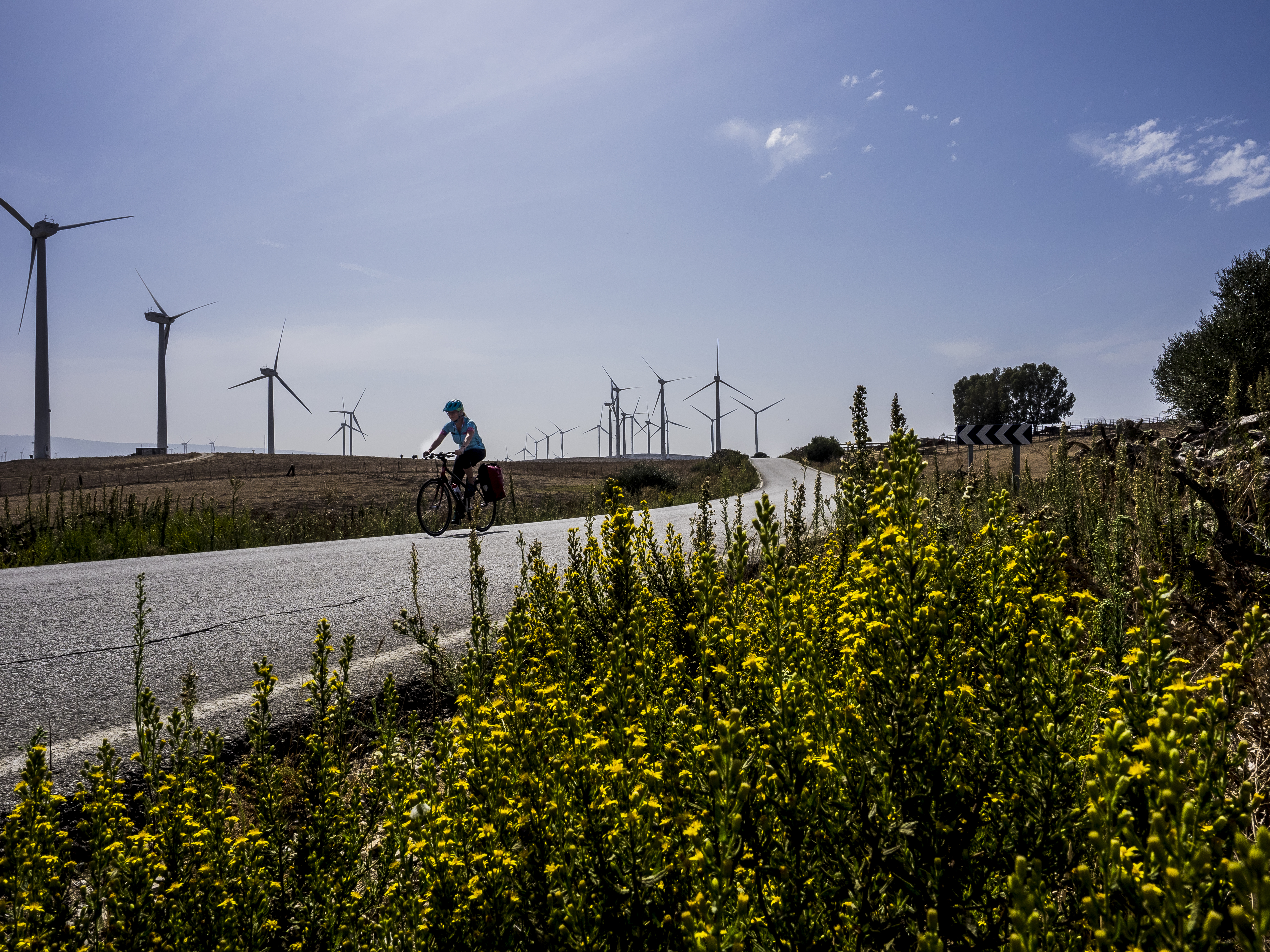 Windpower, Andalucia, Spain