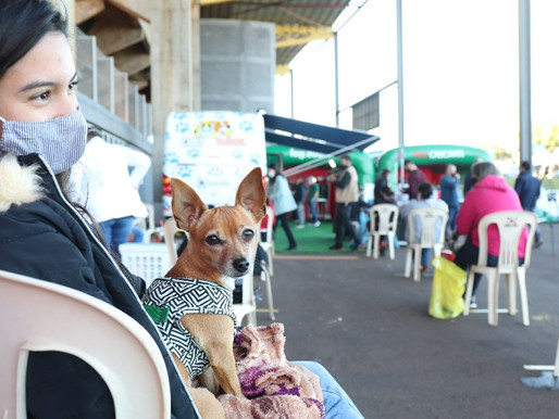 Castramóvel retorna aos bairros com atendimento de excelência aos animais