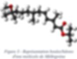 Représentation boules/bâtons moléculaire du Méthroprène