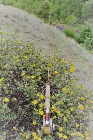Grip Handle Two Piece Rod in its Natural Habitat