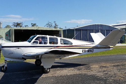 Beechcraft Bonanza N35 (V-Tail)