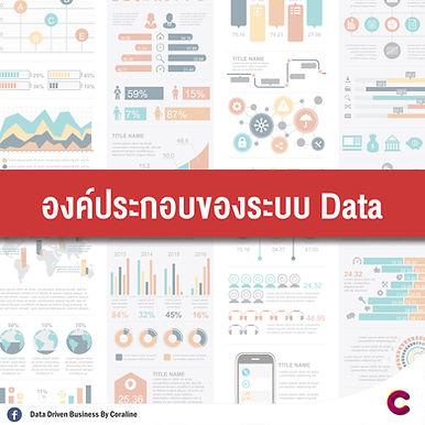 องค์ประกอบของระบบ Data