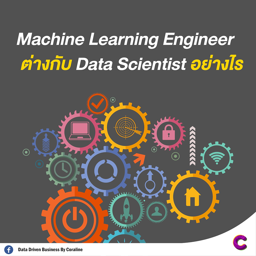 How is the Machine Learning Engineer different from the Data Scientist?