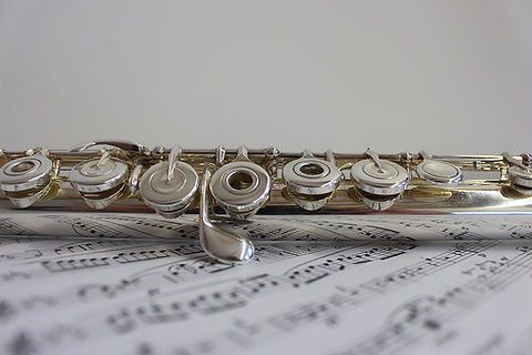 Flute and notes