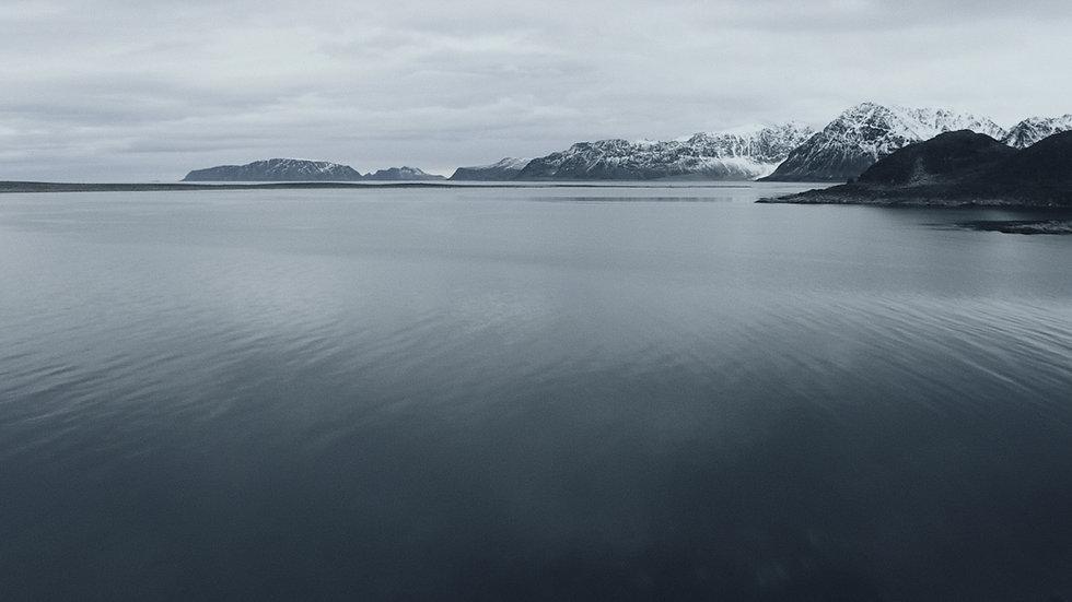 Polar bg_1.7.1.jpg