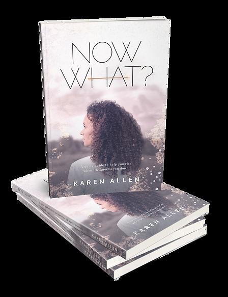 Karen Allen - Now What?