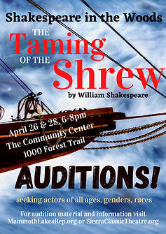 Audition Shrew Poster copy.jpg
