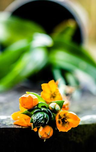 bloem esther omgevallen
