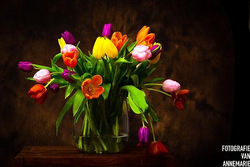 Tulpen, oude stijl