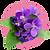 fragrance-note-violet.webp
