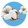 fragrance-note-cotton.png