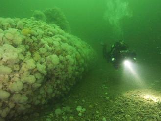 Birkenhead built submarine filmed for the first time