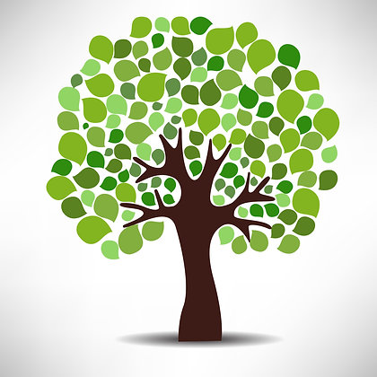 Genealogy Research – Consultation & 3 hours