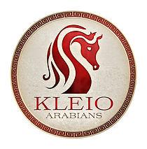 kleio_logo.jpg