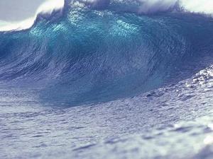 tsunami du confinement