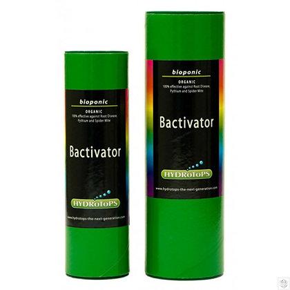 Bactivator